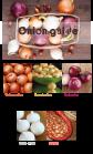 onion guide