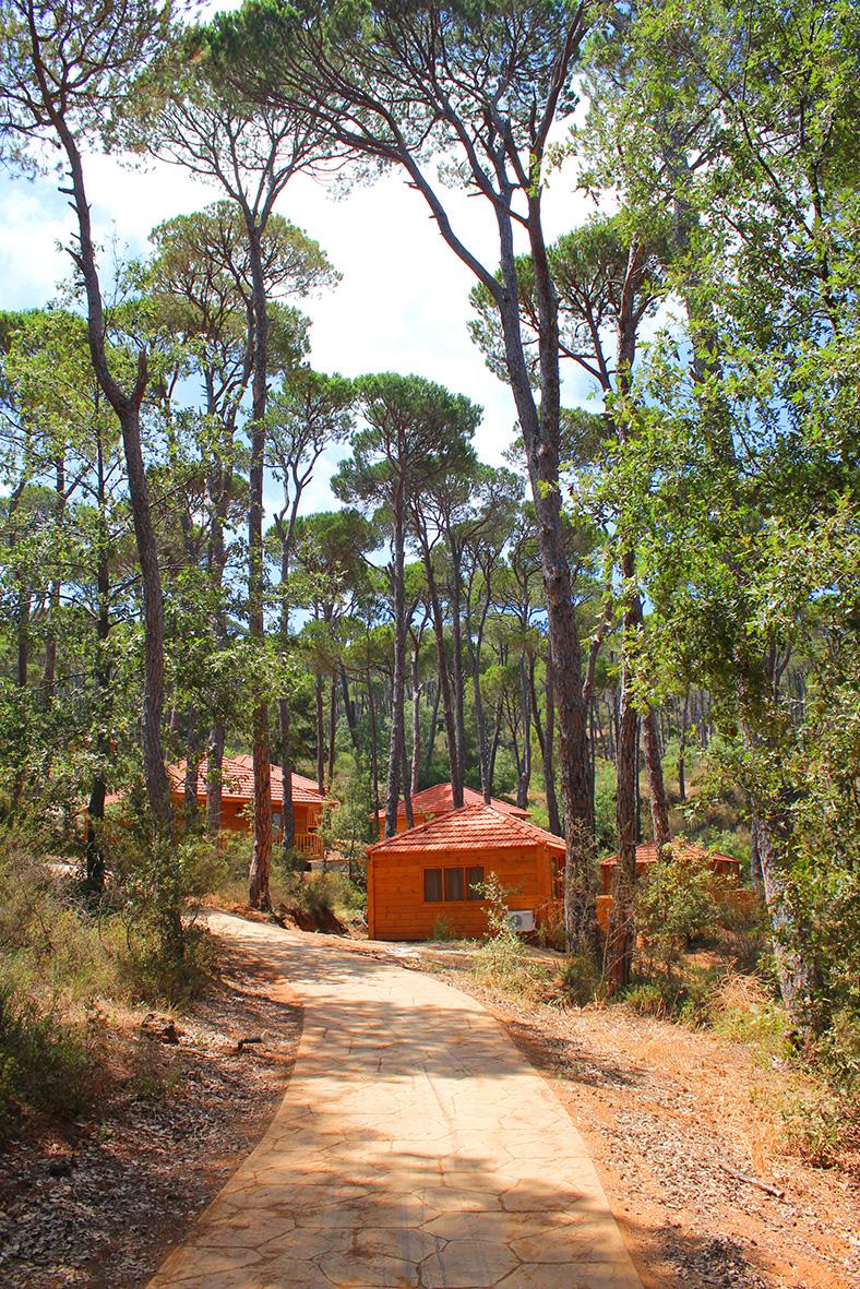 la maison de la foret bkassine south jezzine south lebanon marmite et ponpon