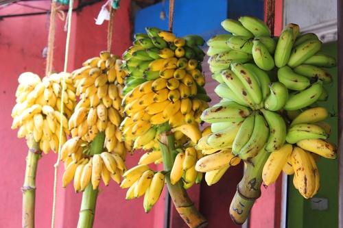 banana sri lanka
