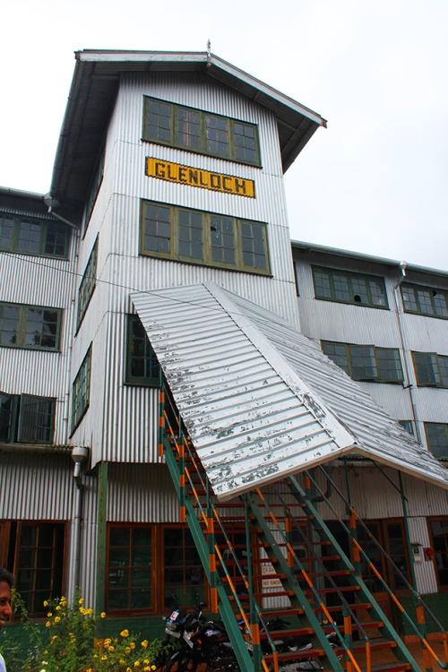 glenloch tea factory