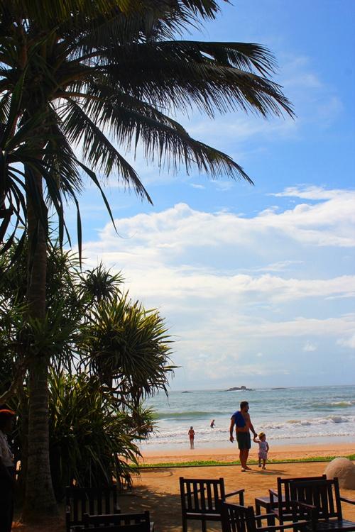 bentota the surf