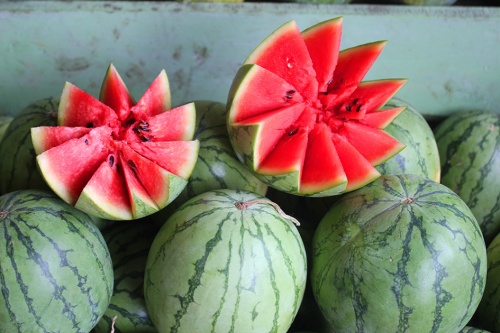 watwermelon sri lanka