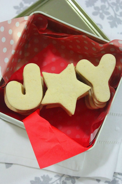 homemade cookies christmas gift