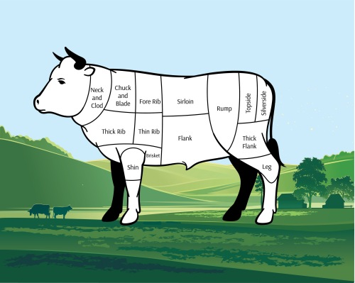 beef cuts guide