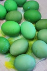 1 Frogs Easter eggs  marmite et ponpon