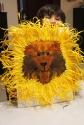 blotto-painting-lion-marmite-et-ponpon